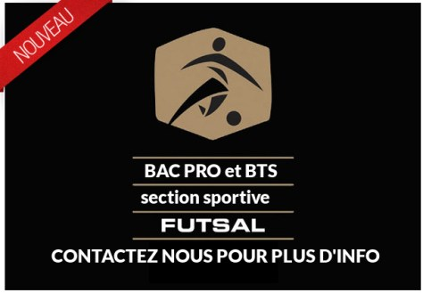 section-futsal