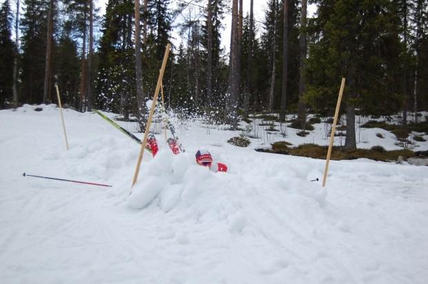Grate synar snön lite närmare