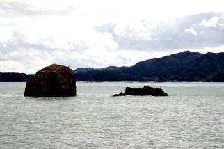 袖浜のモアイ岩(志津川)