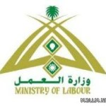 وزير العمل : رفع رواتب السعوديين في القطاع الخاص