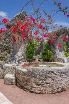 Le chateau de corail - Floride - www.maathiildee.com - fleurs