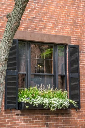 Jardins secrets Beacon Hill Boston-25