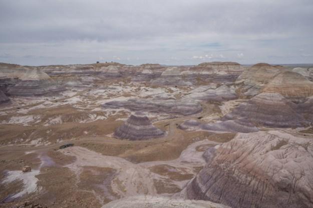 foret petrifiee arizona-26
