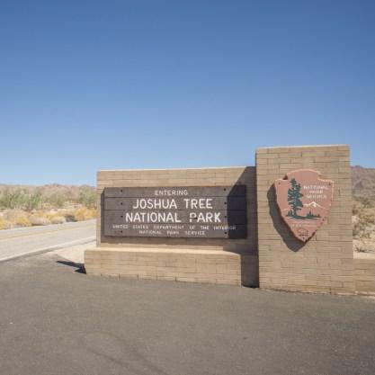 Joshua Tree Park California-21