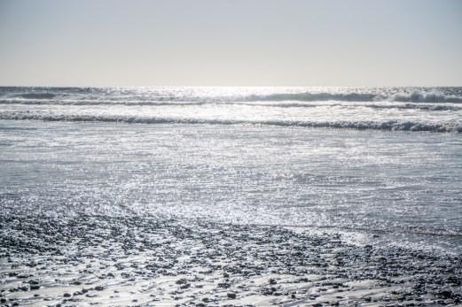 san-diego-californie-torrey-pines-plage-1