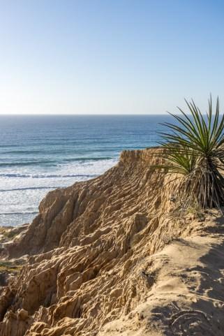 san-diego-californie-torrey-pines-plage-12