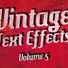 Creativemarket_Vintage_Text_Effects_Vol5_75186_icon.jpg