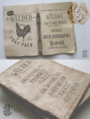 Creativemarket Wilder and Handdrawn Font Pack 82400 icon