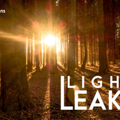 Creativemarket Light Leaks Senses Lightroom Presets 323640 icon