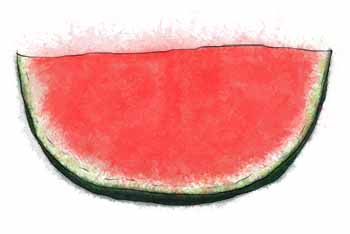 Watermelon slice illustration