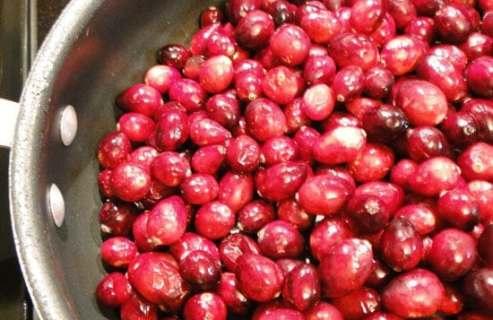 cranberriesupclose_550