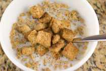 cinnamoncroutons_feature