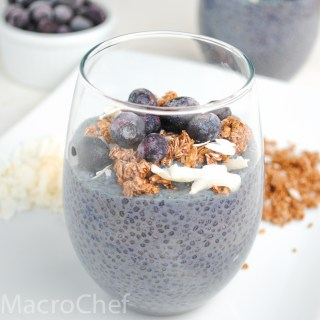 Blueberry Coconut Chia Pudding