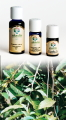 Ylang Ylang Completo - Olio Essenziale 10 ml. (3030-10)