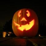 [Especial de Halloween] Calabazas!