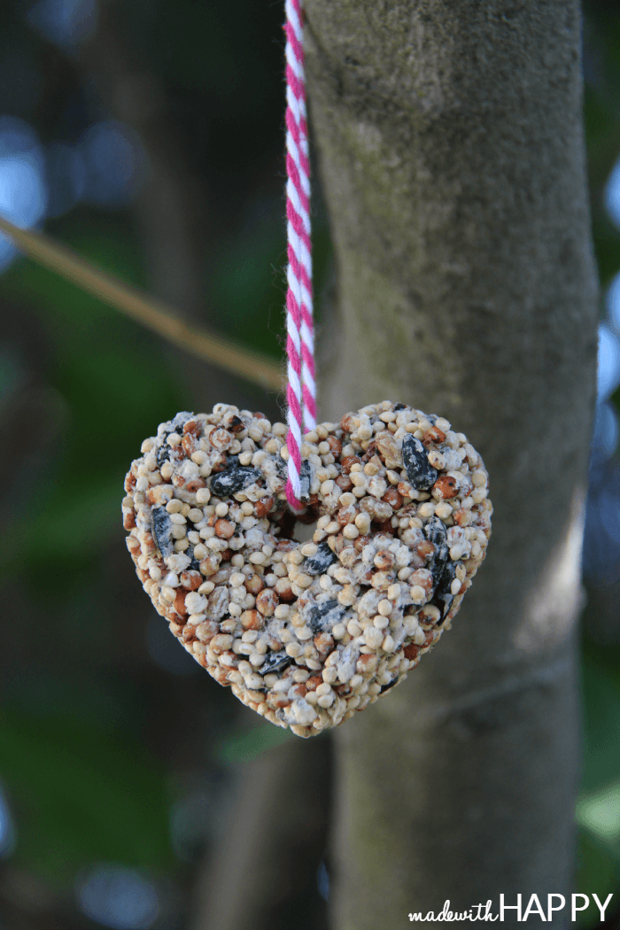 heart-birdseed-hanging