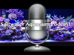 Saltwater Aquarium Podcast