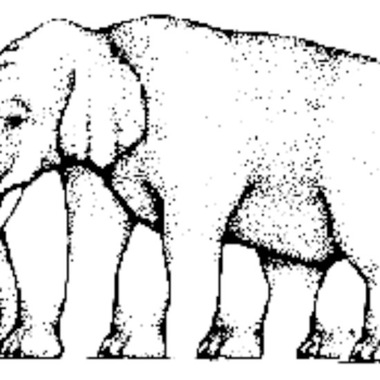 4. How many legs does this elephant have?