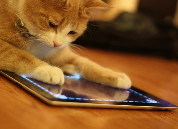5 Useful Apps For Pet Owners