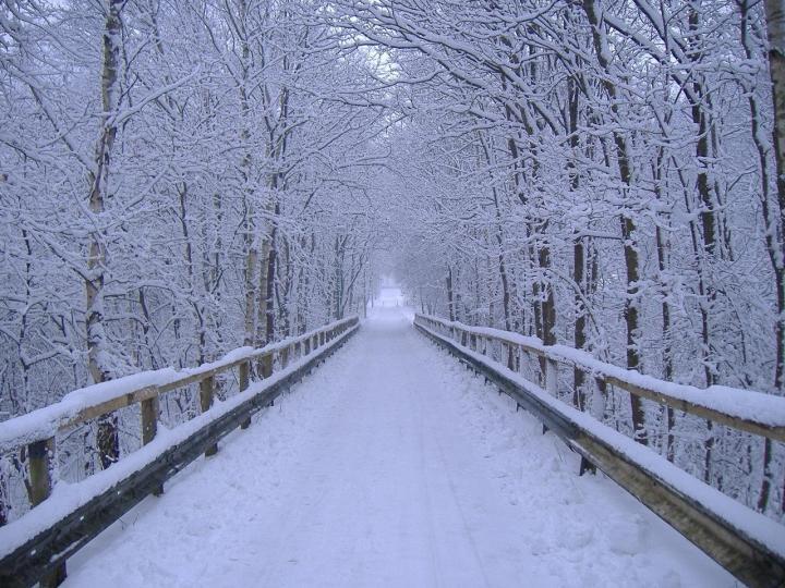 google winter screensavers and wallpaper - photo #17