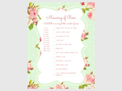 Bridal Shower Games, Printable Bridal Shower Games, Bridal Shower Game Prizes, Unique Bridal Shower Games, Fun Bridal Shower Games 3