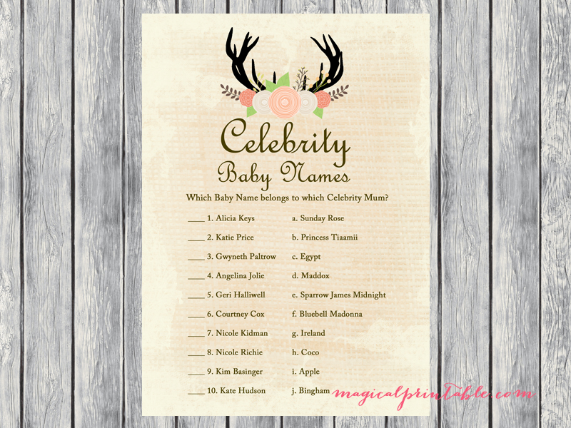 Rustic Country Baby Shower Game Set