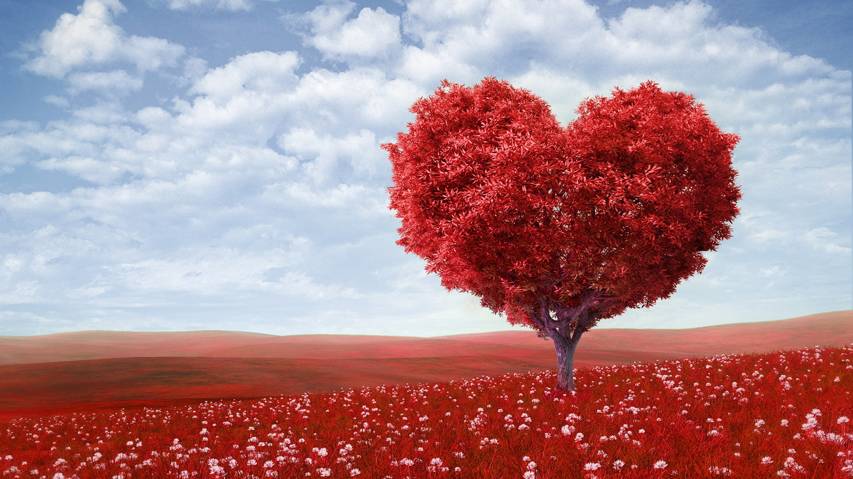 472254_valentines-day_love_romance_heart_tree_green_5000x2812_(www.GdeFon.ru)