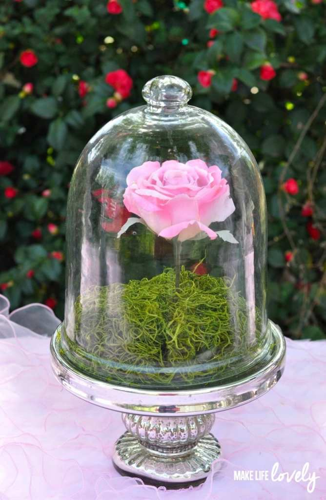 Belle's Enchanted Rose