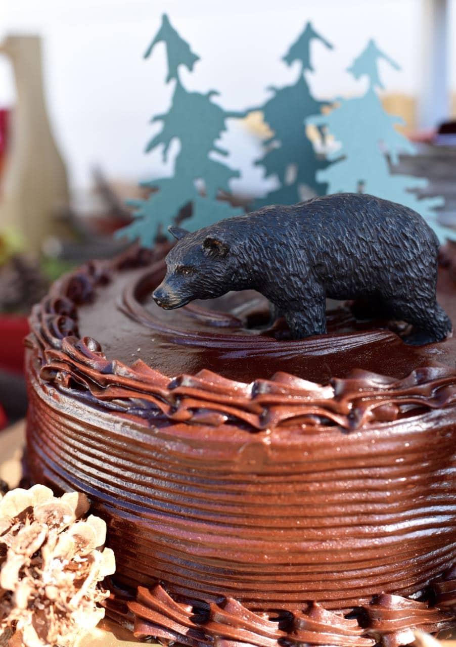 Backyard camping party cake