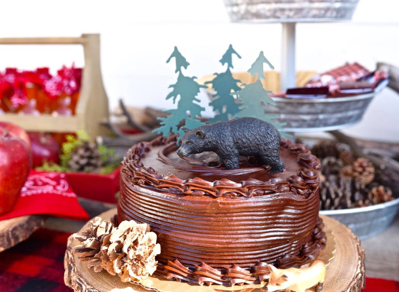 Cake for a backyard camping party
