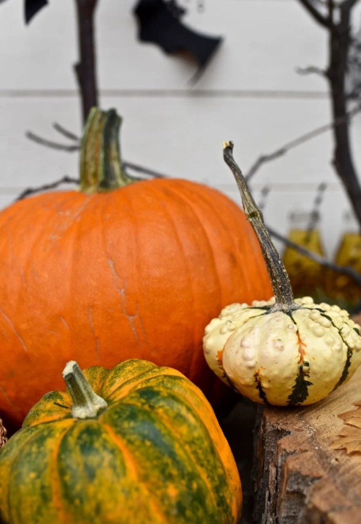 Decorating with pumpkins for Halloween