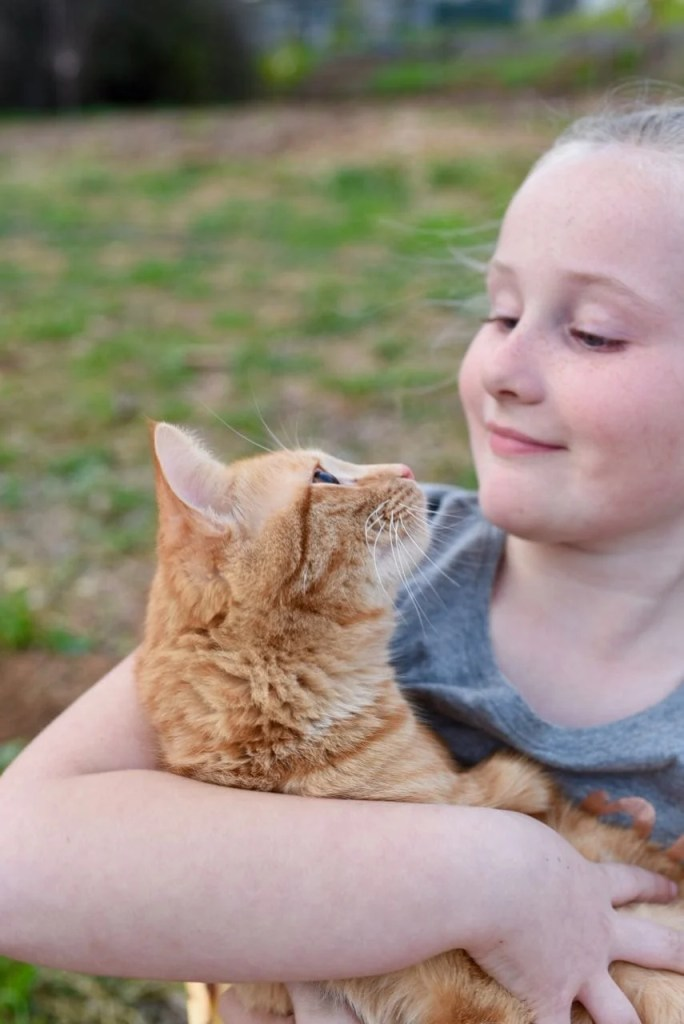 Keeping your cat healthy with IAMS