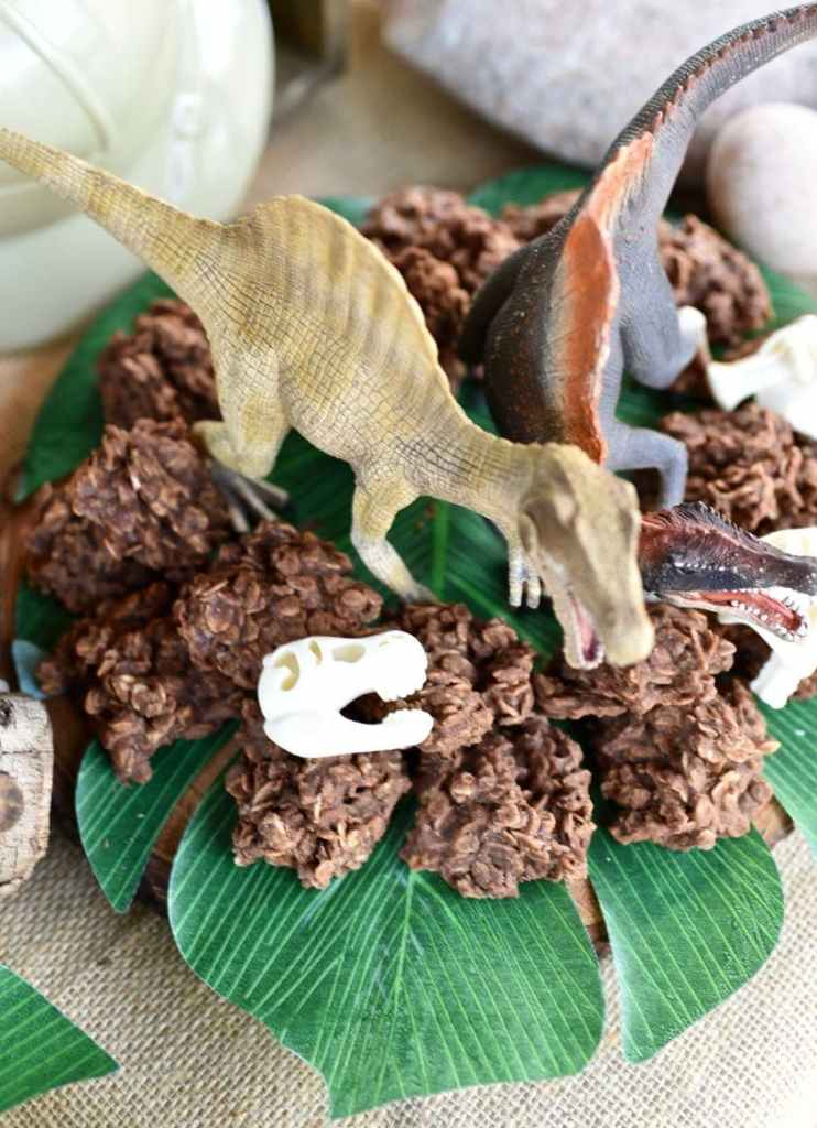 Dinosaur droppings cookies from chocolate no bake cookies