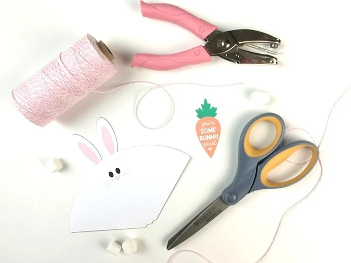 Easter Bunny Treat Cones and Favor Bags Printable and Tutorial and Supplies