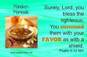 Monday's Marinade Favor-Ps 5-12