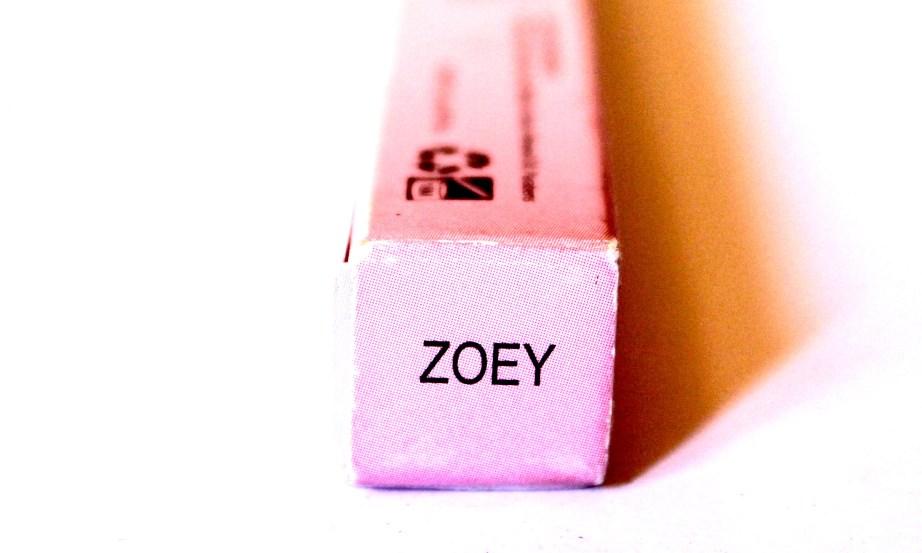 Lipland Matte Lip Crayon Lipstick Nicol Concilio Zoey