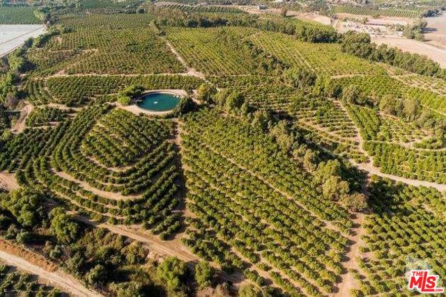 Agricultural Land for sale Somis CA