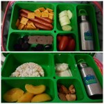 Litterless lunch ideas