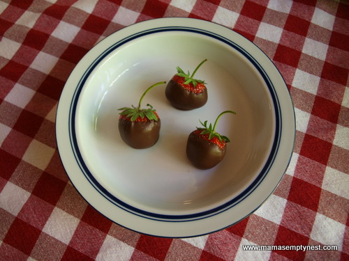 Chocolate Covered Strawberries Trio