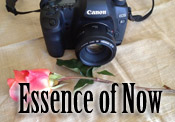 Essence of Now