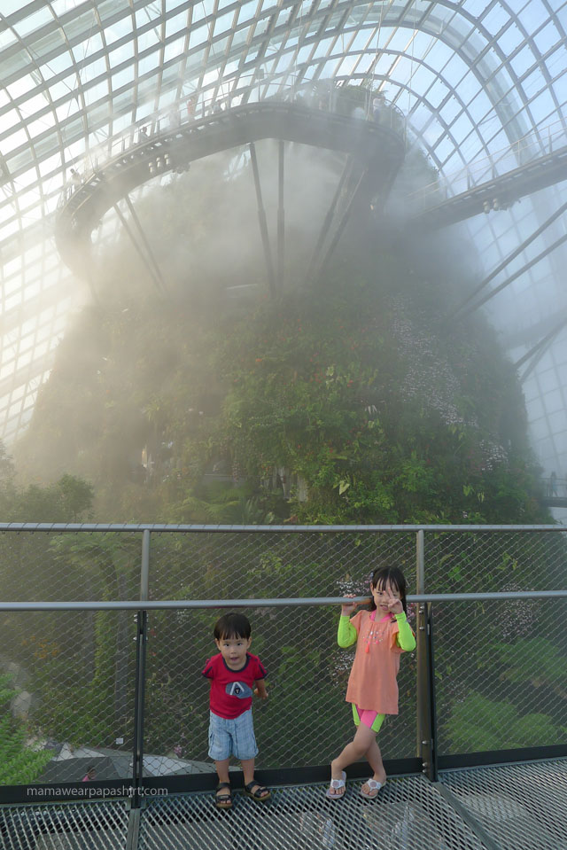 cloud_forest_dome6