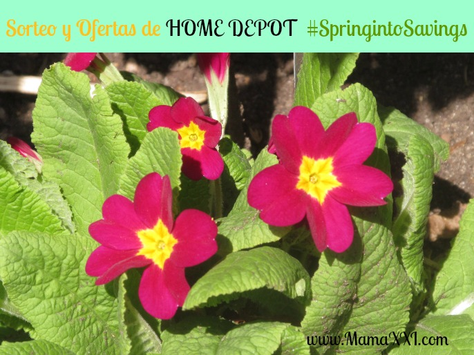 home depot ofertas y super sorteo de primavera