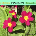 Home Depot: Ofertas y super sorteo de Primavera #SpringIntoSavings