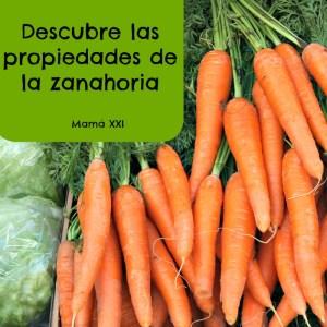 Descubre las propiedades de la zanahoria