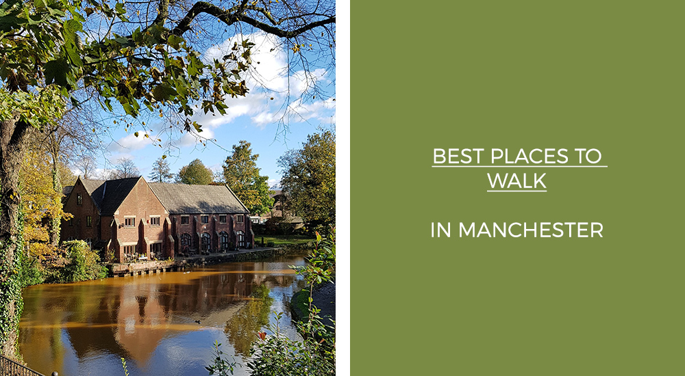 Best Places to Walk in Manchester
