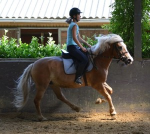ponykamp 2015 (282)