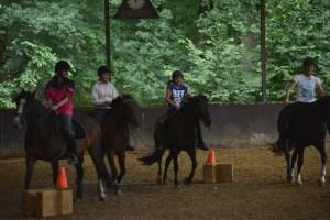 ponykamp 2015 (155)