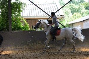 ponykamp 2015 (247)