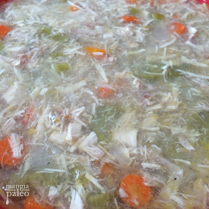 paleo-chicken-soup-carrots-celery-recipe