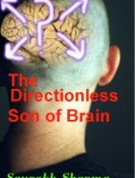 The Directionless Son of Brain- Book Review